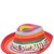 Straw Effect Hat W/ Embroidered Hatband