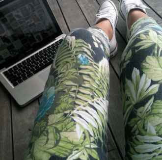 pants leggings palm tree print