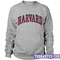 Harvard sweatshirt - teenamycs