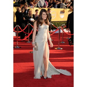 Lea michele grey one shoulder evening dress 2012 sag awards red carpet
