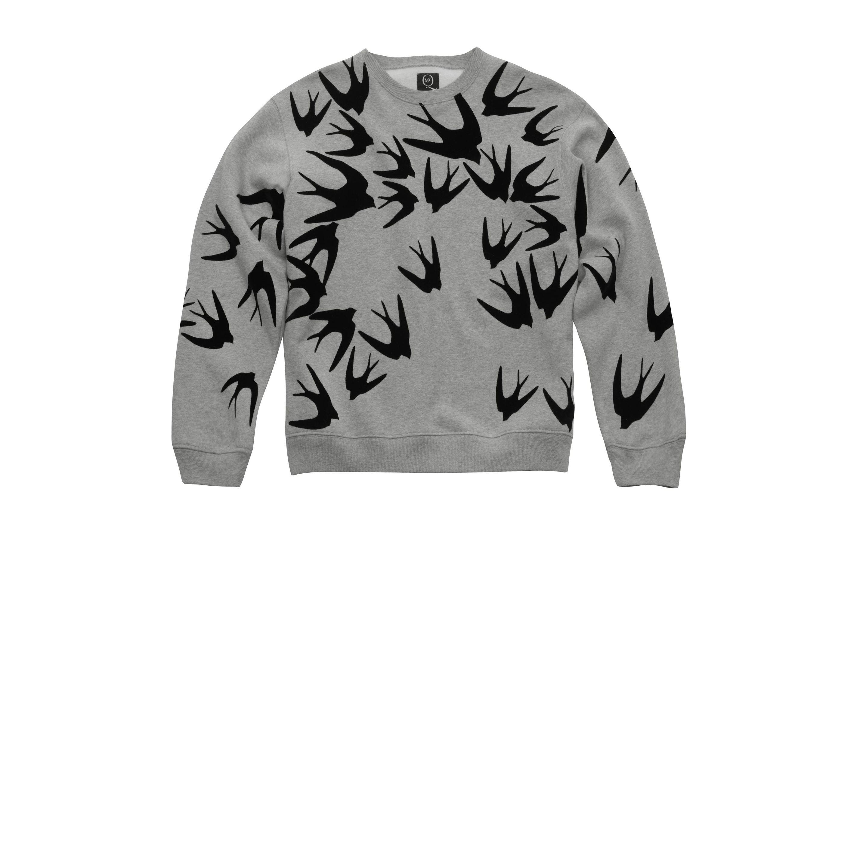 Swallow sweatshirt mcq