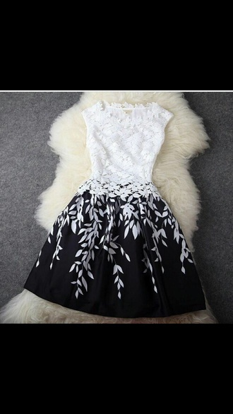 dress black white dress lace dress short dress white