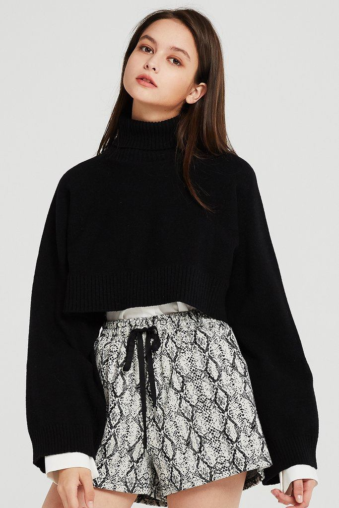 Skyler Cropped Knit Turtleneck Sweater