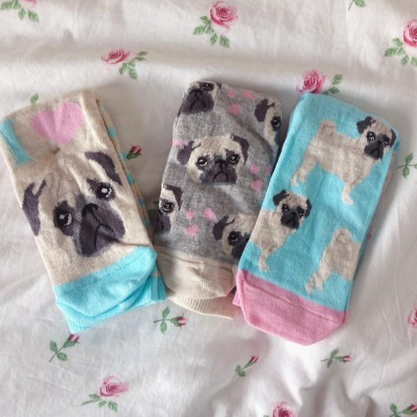 socks pugs pugs primark puppy