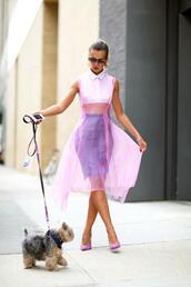dress,celebrity,blouse,purple,streetstyle,fashion,pink dress,see through dress,mesh top,crop tops