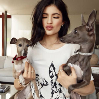 top t-shirt kylie jenner kendall + kylie label
