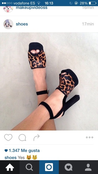 shoes open toes leopard print black heels high heels