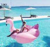 home accessory,pink swimwear,pibk,flamingo,pool accessory,float,swimwear,pool,pool party