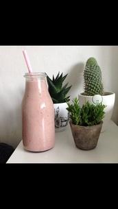 plants,plant pot,cactus,cool,indie,pale,lifestyle,home accessory