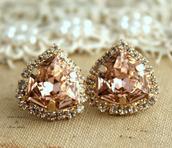 jewels,earrings