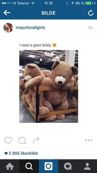 home accessory home decor bear teddy bear brown girl girly girly wishlist room accessoires kids fashion kids room teenagers