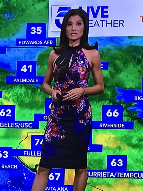dress black blue floral halter neck halter dress cut-out cut-out knee length dress