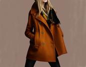 mantel,coat,winter coat,rust