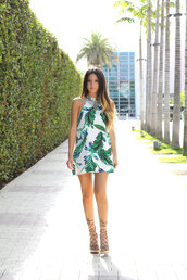 the material girl,blogger,dress,palm tree