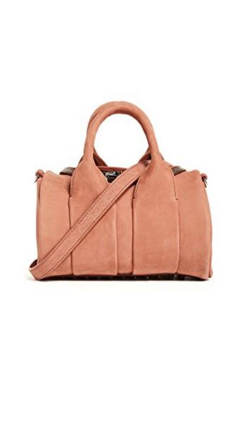 Alexander Wang mini bag