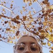 sunglasses,glasses,clear glasses frame,aesthetic