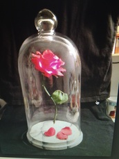 home accessory,disney beauty and the beast r,disney,beauty and the beast