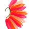 Bague d'oreille avec ailes en plumes - topshop france