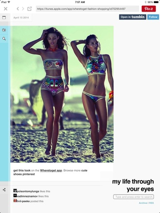 swimwear colorful mesh