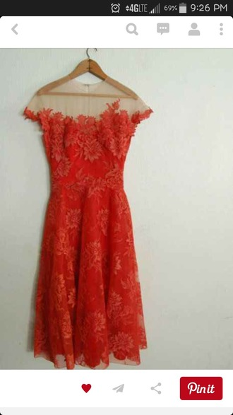 dress orange dress floral dress texture floral texture sheer dress sheer long dress knee length dress short sleeves