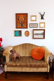 steffy's pros and cons,blogger,retro,frame,sofa,home accessory,pillow,dog