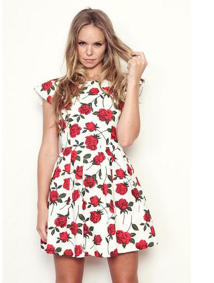 a53334fc39 ✿ Mink Pink ✿ BNWOT White Red Rose Print Cry Baby Floral Skater Dress XS 6  ...
