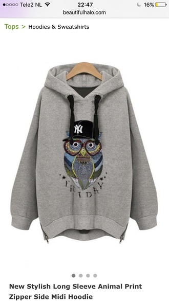 sweater grey hoodie owl casual teenagers fashion style trendy beautifulhalo