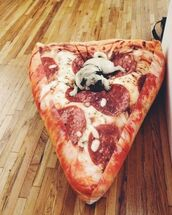 foodporn,pizza,food,bean bag,home accessory,dog,cool,stuff