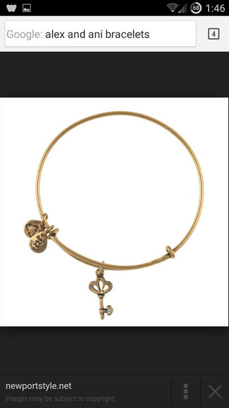 jewels charm bracelet alex and ani