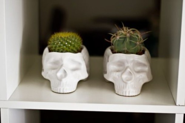 home accessory plant holder skull decoration cactus