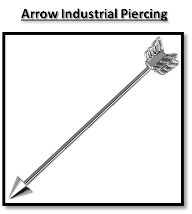 Silver Arrow Scaffold Barbell BAR Industrial Piercing Cupid | eBay