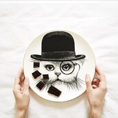 home accessory,rory dobner,cats,hipster,kitchen,plate,furniture,avant garde,style,dinnerware,home decor,gift ideas,best gifts