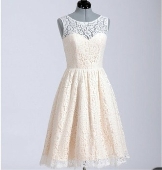 dress cute dress lace dress lace cute white dress white