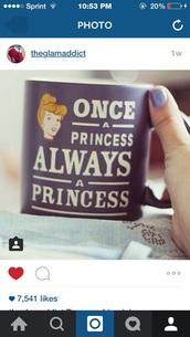 home accessory,mug,princess