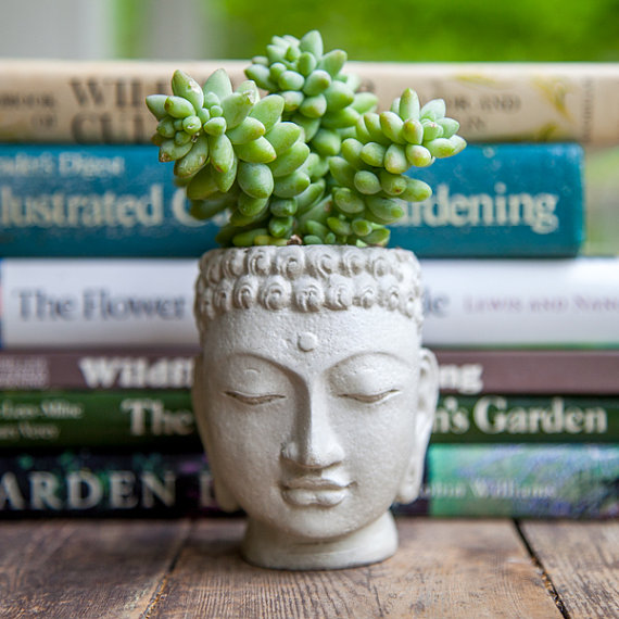 Buddha Head Planter  small cement pot  Buddha by brooklynglobal