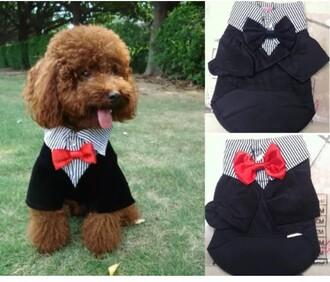 blouse dog clothes pet