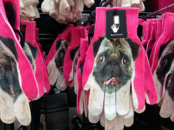 gloves pug lover