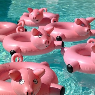 home accessory pool accessory pork funny
