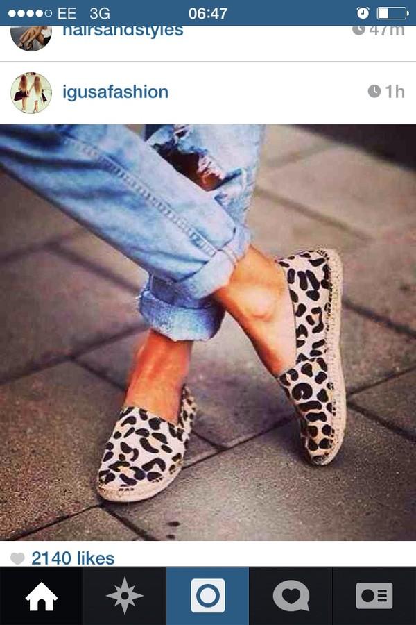 shoes leopard print toms mules shoes leopard print