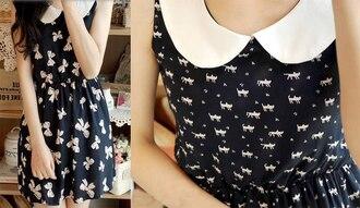 dress little black dress white collar