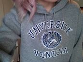 sweater,grey,universita venezia,university hoodie,hoodie,jumper