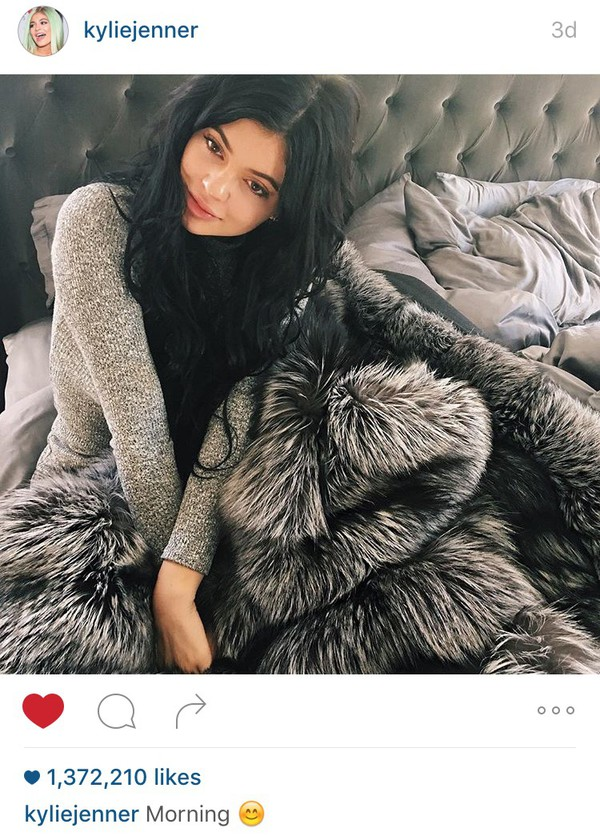 Home Accessory Fur Blanket Kylie Jenner Kardashians