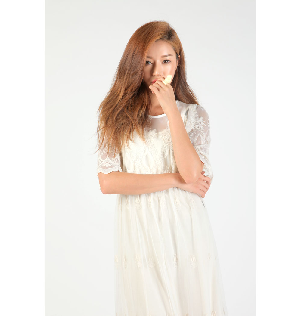 Long sheer laced dress