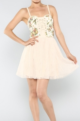 Denim Floral Mesh Dress