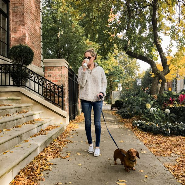 kelly in the city - a preppy chicago life style and fashion blog blogger sweater shoes jeans fall outfits pullover sneakers