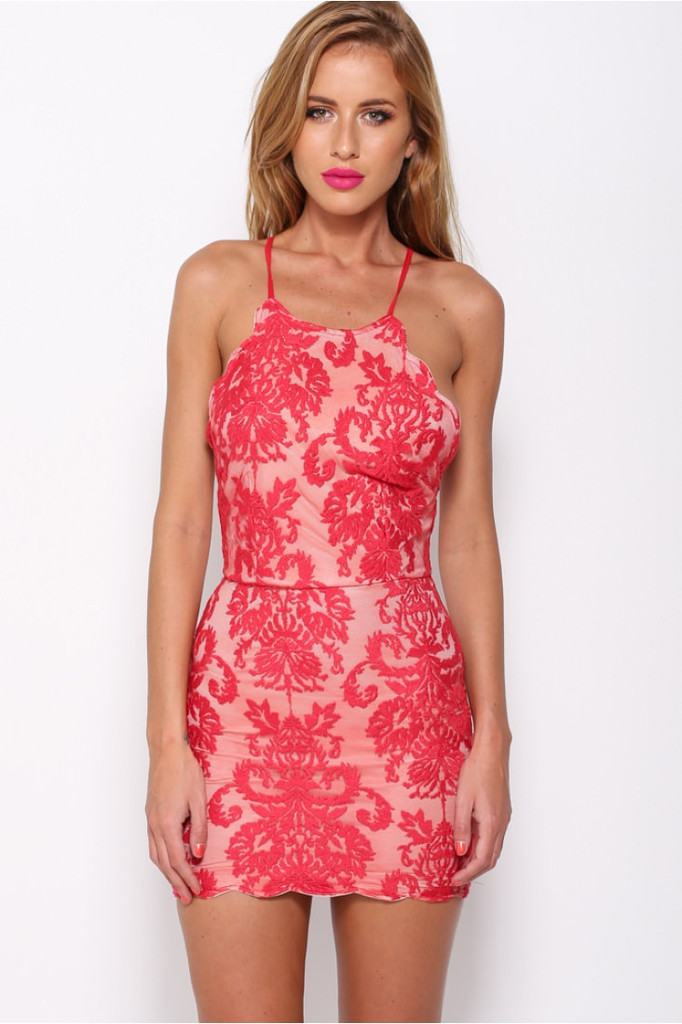 99fd7c9b1c20 Daphne - Halter Lace Bodycon Dress