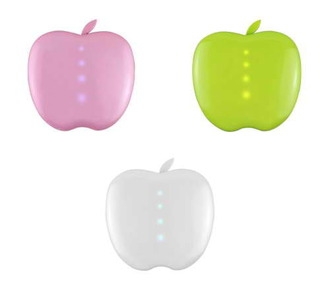 home accessory portable chager apple