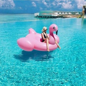home accessory pool pool accessory flamingo summer holidays