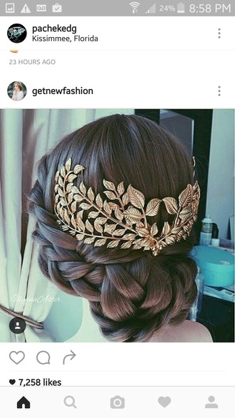 hair accessory hair adornments