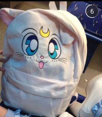 bag cats moon